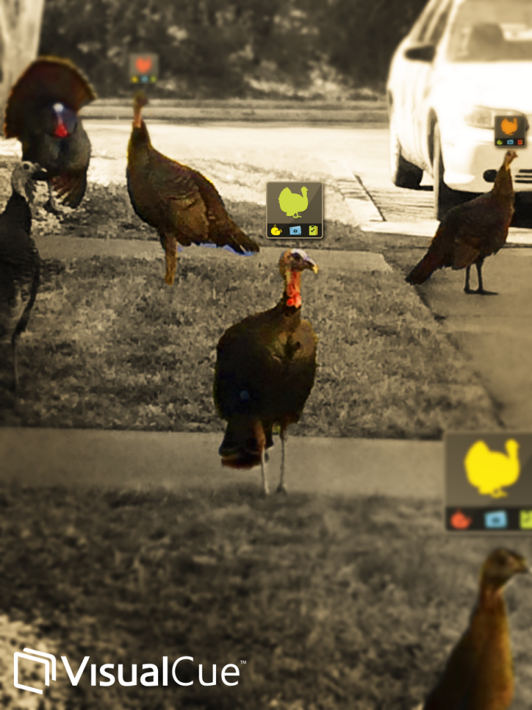 Even turkeys need real-time performance data.